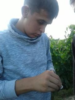 PLOQUIN ERIC vendanges 2017 Bourgueil